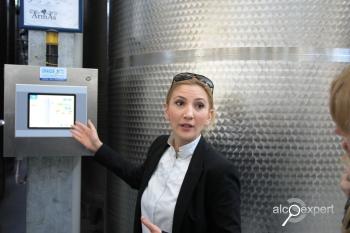 Вино Армении. Винодельня ArmAs (компания Golden Grape AmAs) – американская мечта под армянским солнцем. ФОТО
