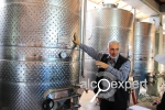Вино Армении. Семейная винодельня Van Ardi у подножия вулкана. ФОТО. ВИДЕО