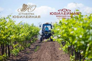 Винодельня «Юбилейная»