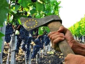ЕС планирует «добровольное» уничтожение виноградников Румынии – на очереди Молдова