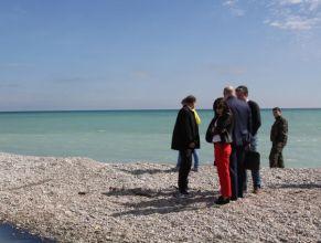 Винзавод «Коктебель» объяснил причину появления окрашенной воды в море