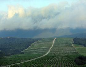 Особенности национального виноделия: Ассоциация аграрного туризма с успехом презентовала винный маршрут «Хвала вину»